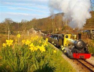 Eskdale and Ratty Railway